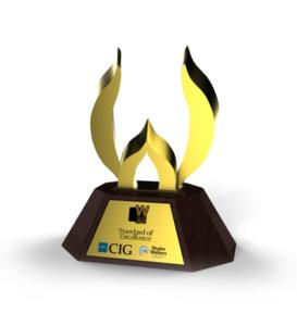 WebAwards 2010 Standard of Excellence